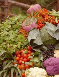 Selling from Your Allotment